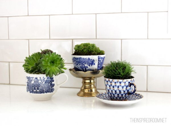 plants-in-teacups-e1362976068728